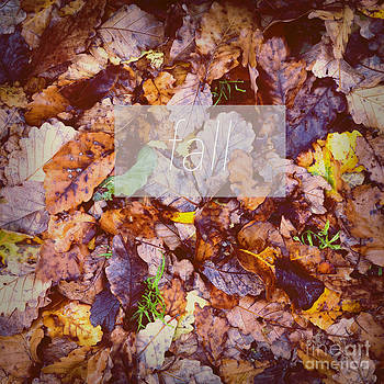 Tim Hester - Fall Leaves Poster