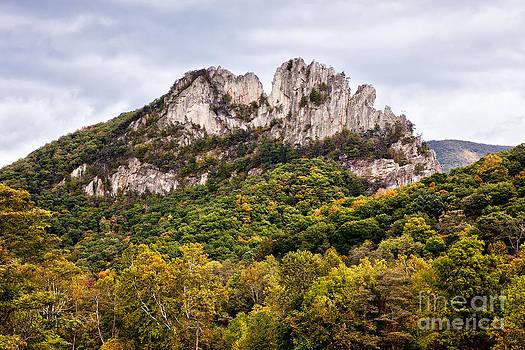 Dan Carmichael - Fall on Seneca Rocks West Virginia
