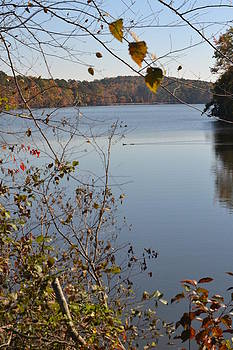 Fall on The Lake by Durrell McCall