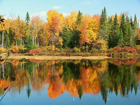 Fall Reflections by Elaine Franklin