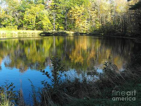Fall Reflections In The Bee Pond by Lisa J Gifford