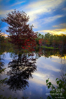 Fall Reflections by Nancy Dempsey