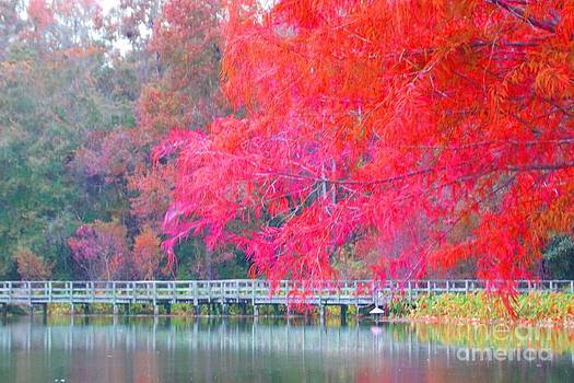 Fall Time  by Annette Allman