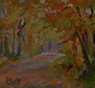 Fall Trail by Patricia Seitz