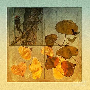 Fall  by Zsuzsanna Szugyi