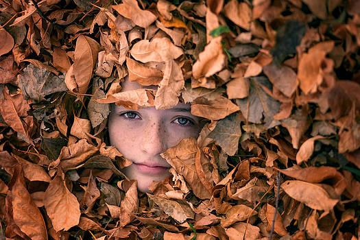 Fallen Leaves by Linda Storm
