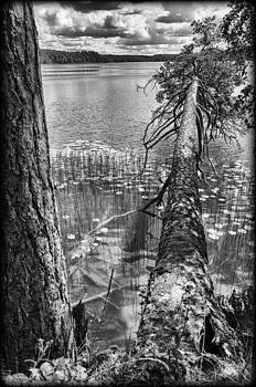 Fallen by Yevgeni Kacnelson