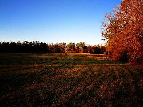 Greg Simmons - Fallow Field