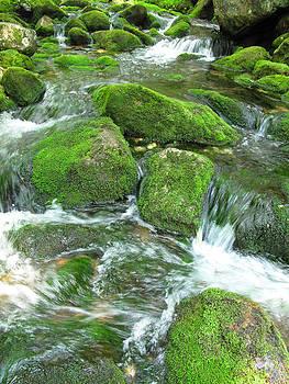 Falls Along the Skookumchuck by Bucko Productions Photography