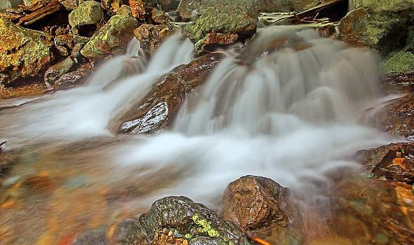 Falls Creek Mount Rainier National Park by Bob Noble Photography
