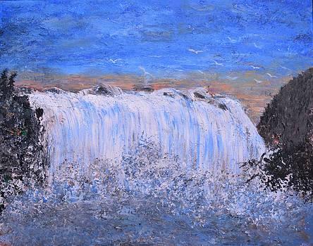 Falls by Debra Kent