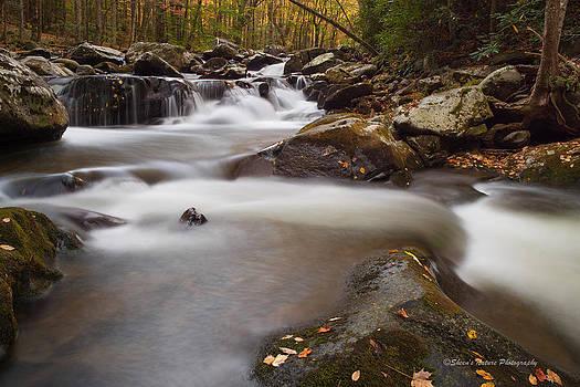 Falls by Sheen Watkins