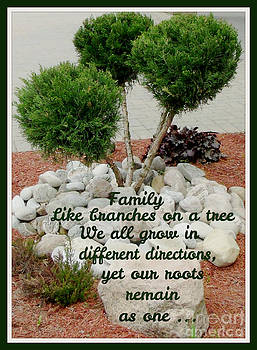 Gail Matthews - Family...like branches on a tree