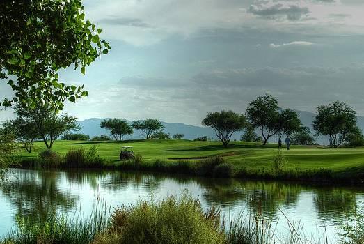 Tam Ryan - Fantasy Golf Course