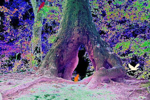 Fantasy Land by Brenda Donko