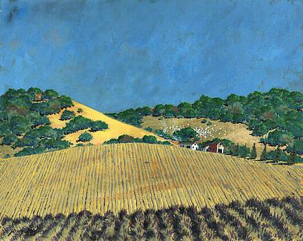 Farm at Lona Gulch by John Wyckoff