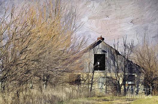Liane Wright - Farm - Barn - Country Charm