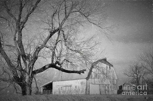 Farm Life  by Liane Wright