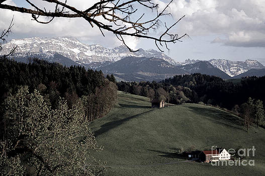 Susanne Van Hulst - Farm Scene in Switzerland 2