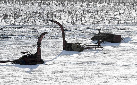 Farmland Dinosaurs by Kevin Snider