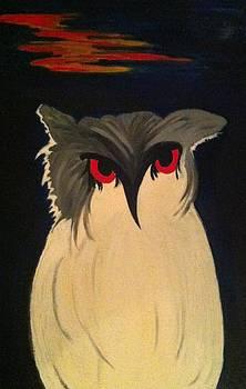 Fatty owl by Zarine Victor