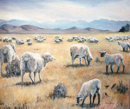 Feed my Sheep by Donna Tucker