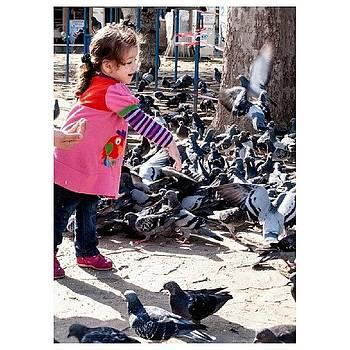 Feeding Time, Eyup - Istanbul by Steve Outram
