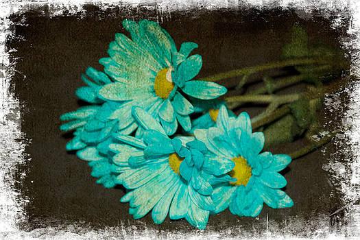 Regina  Williams  - Feeling Beautifully Blue