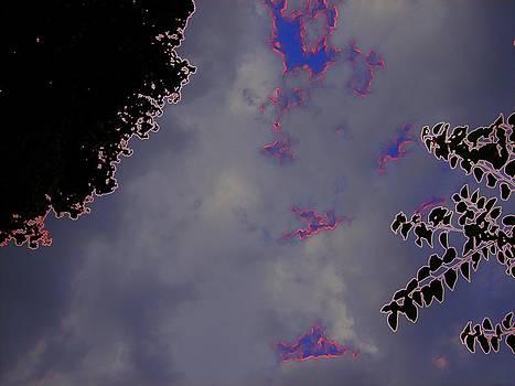 Feline sky by Gregory Anthony Stone