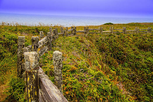 Fence line to Paradise by Brian Williamson