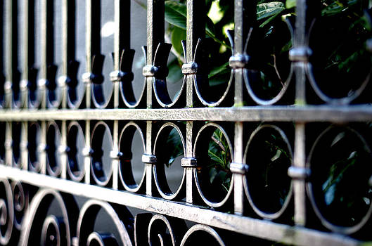 Marilyn Wilson - Government House Gate 2