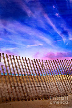 Fenced Beauty by Jeanette Brown