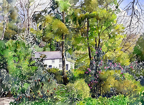 Ferris Cottage And Trelissick Gardens by Margaret Merry