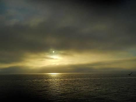 Ferry Sunrise by Jeff Moose