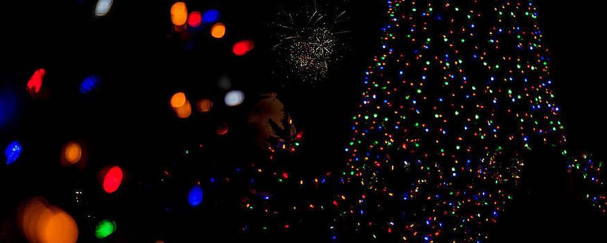 Festivities by Linda Storm