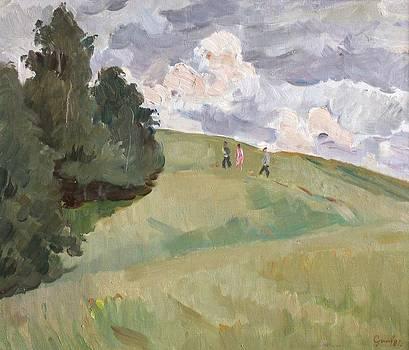 Field by Alexander Stolbov