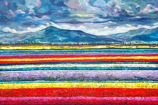 Field of Dreams by Suzanne King