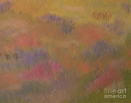 Field of Flowers abstract by Tanja Beaver