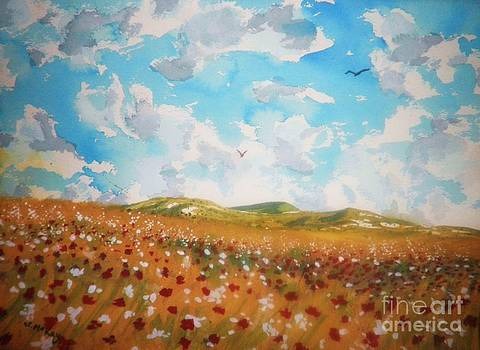 Field of Flowers by Suzanne McKay