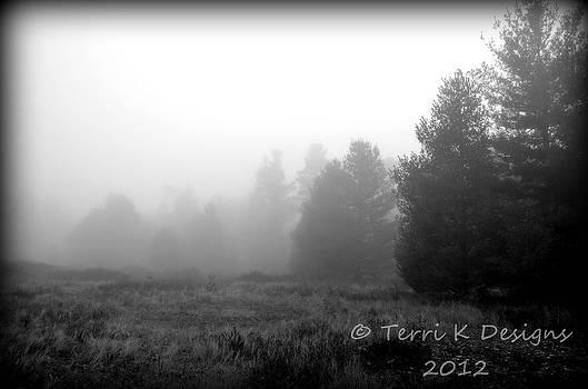 Field of fog by Terri K Designs