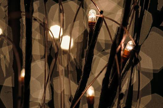 Field Of Light by Paul Geilfuss