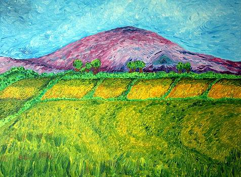 Fields Around Knocklayde by Paul Morgan