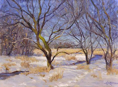 Field's Edge by Scott Harding