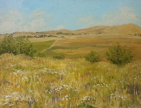 Fields  Hills And Summer Heat by Yaroslav Kuvshinov