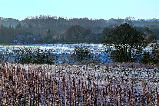 Fields Of Frost by Karen Grist