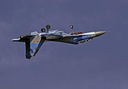 Fighter jet. by Fernando Barozza