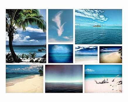Fiji Me by Karen Lewis
