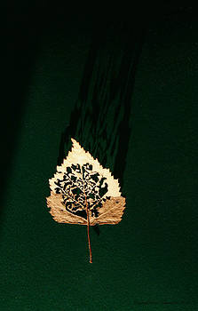 Filigrane Leaf by Leena Pekkalainen