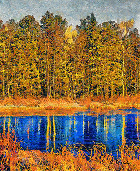 Finland forest by George Rossidis