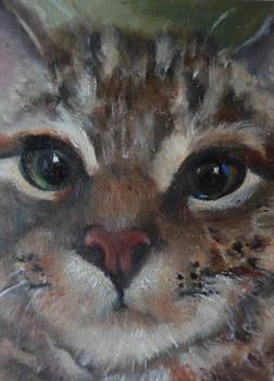 Fiona Upclose by Jessmyne Stephenson